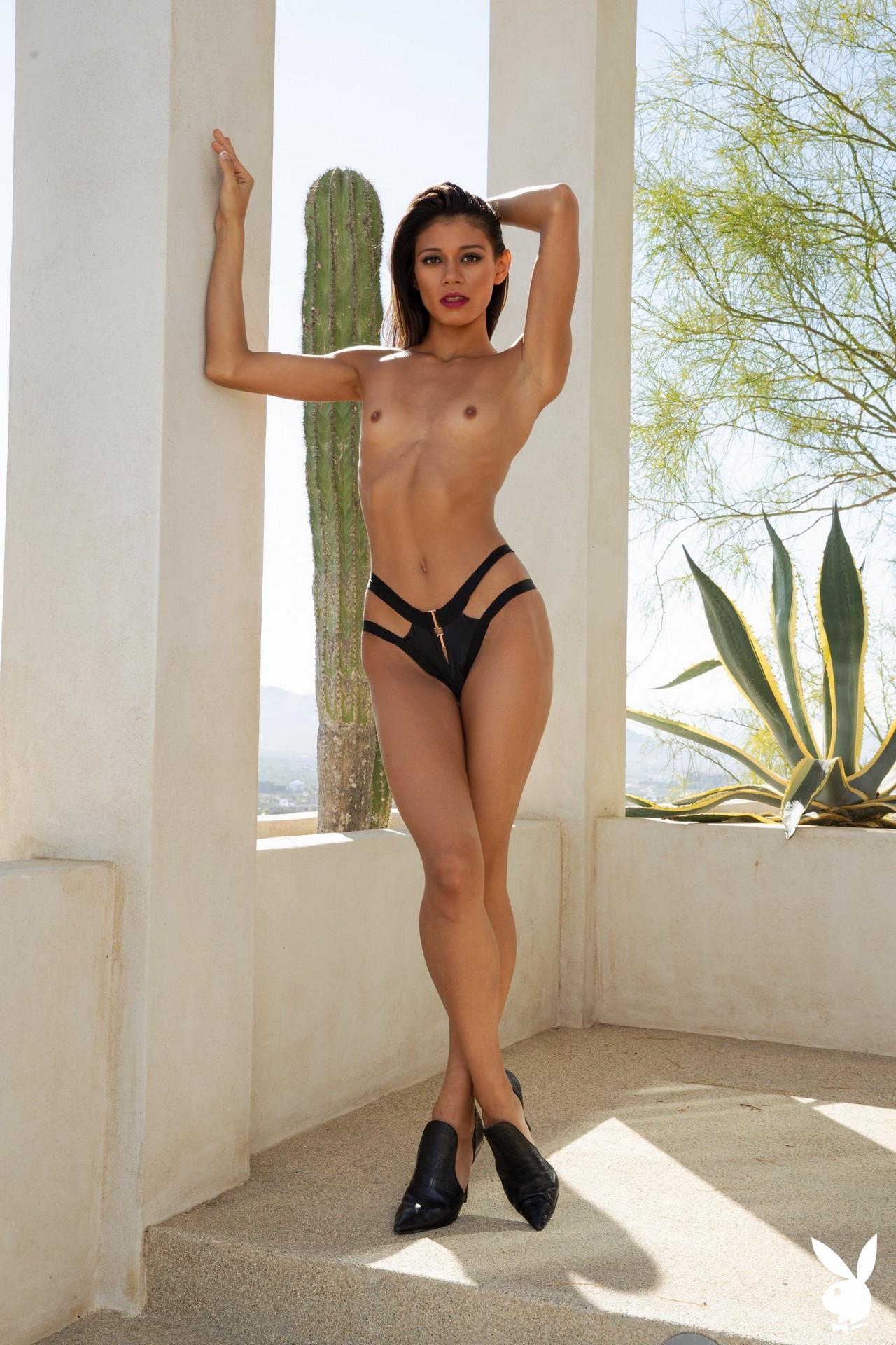 Hannah Le In Bold Desires Playboy Plus (11)